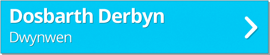 derbyn